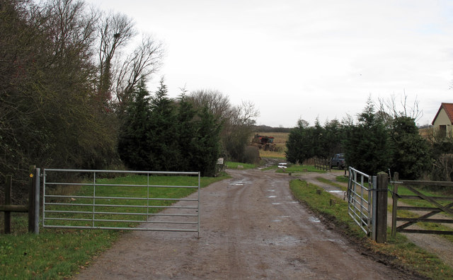 Footpath on farm track