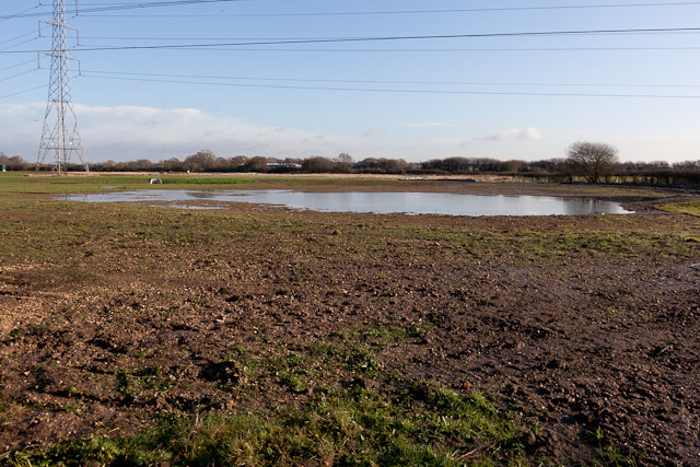 Pond on West of Waterlooville housing development