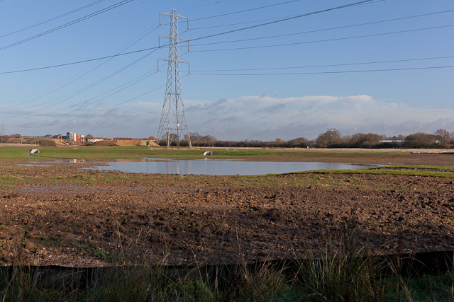 Pond on West of Waterlooville housing development site