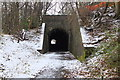 NT2739 : Eshiels Tunnel by Jim Barton