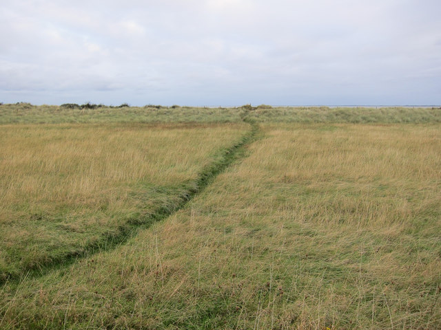 Anglers' path, Spurn Point