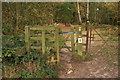 SJ5255 : Stile and footpath on Bulkeley Hill by Jeff Buck