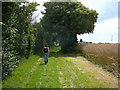 TM0140 : Walking towards Rand's Farm, near Hadleigh by Colin Park