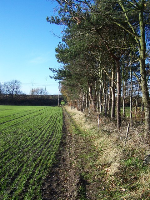 Footpath To Footherley