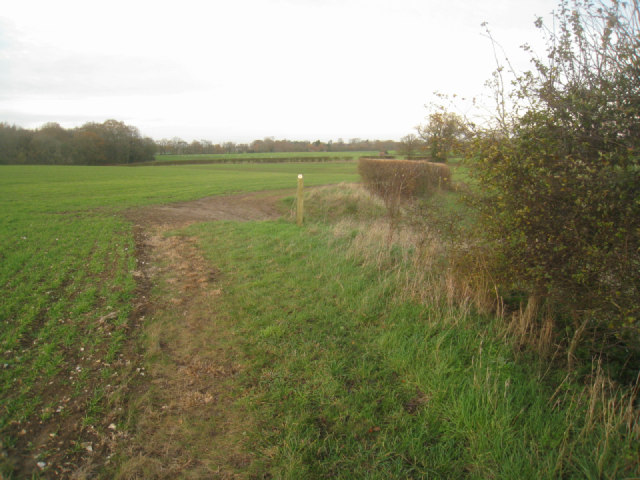 Footpaths & fields