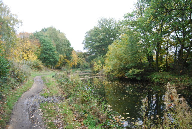 Autumn, Basingstoke Canal
