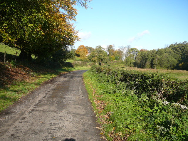 Country lane north of Beechwood Farm, Norley