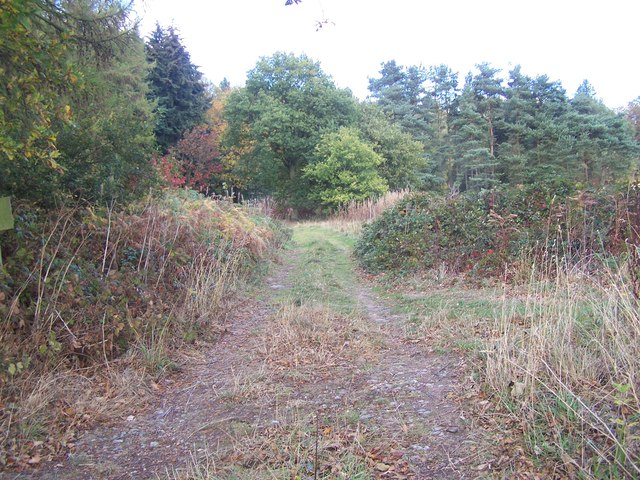 Footpath Near Woodcock Corner