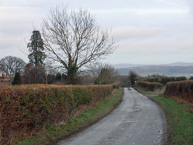 Lane to Lodge Farm