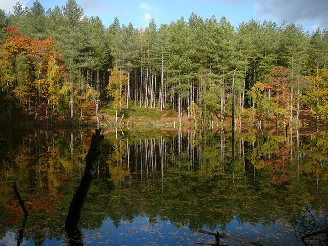 Autumn colours at Dead Lake, Delamere Forest