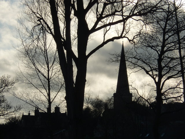 Bakewell church and trees in silhouette