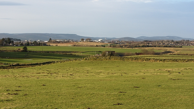 Fields and dykes