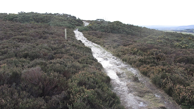 Path, Brimmond Hill