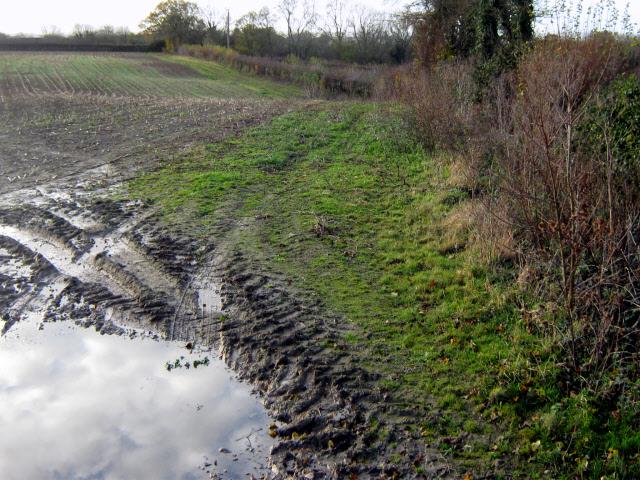 Muddy field near Upton