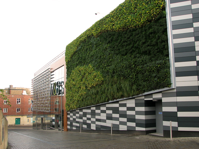 Guest Column: U201cGrow Up! The Vertical Garden Trendu201d