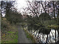 SD7706 : Manchester, Bolton and Bury Canal, Scotson Fold by David Dixon