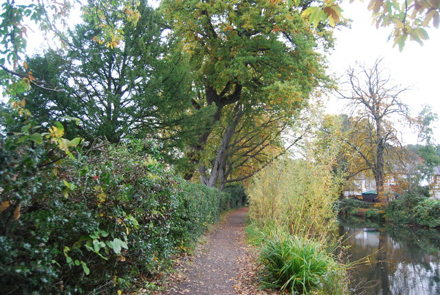 Towpath, Basingstoke Canal