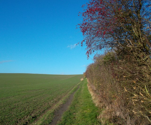 Roman Road on Brightwell Barrow