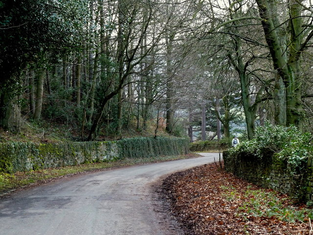 Smallfield Lane through the woodland by Agden Reservoir
