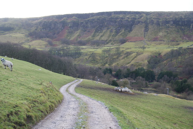 Farm track descending to the valley bottom