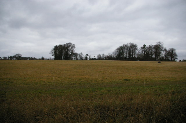 Winter fields, Farnborough