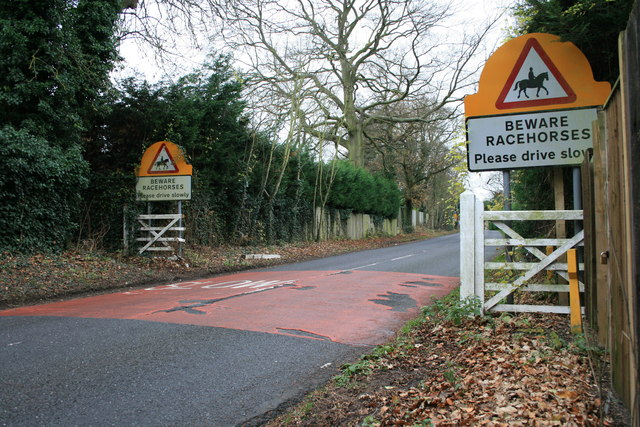 Headley Road: racing yards
