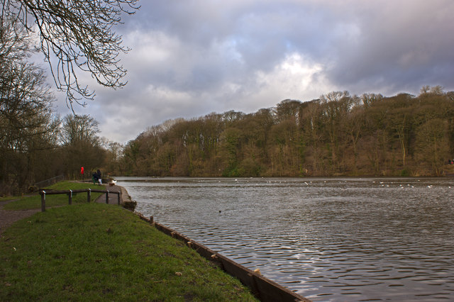 The Lake at the Yarrow Valley Country Park