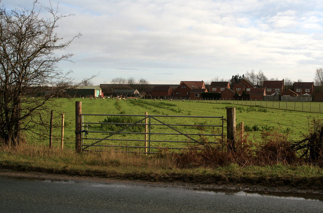 Houses on Tranmore Lane
