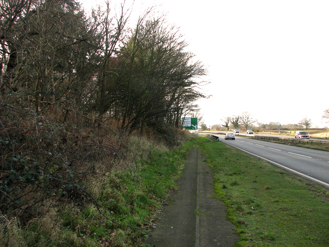 The A12 road past Leatherjacket Covert, Holton St Mary