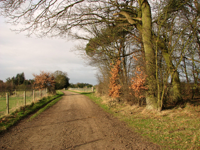 Footpath past King's Wood, Holton St Mary