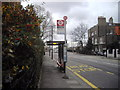 TQ2677 : Bus stop in Beaufort Street, Chelsea by PAUL FARMER