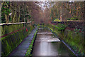 SP0683 : The River Rea alongside Cannon Hill Park, Birmingham by Phil Champion