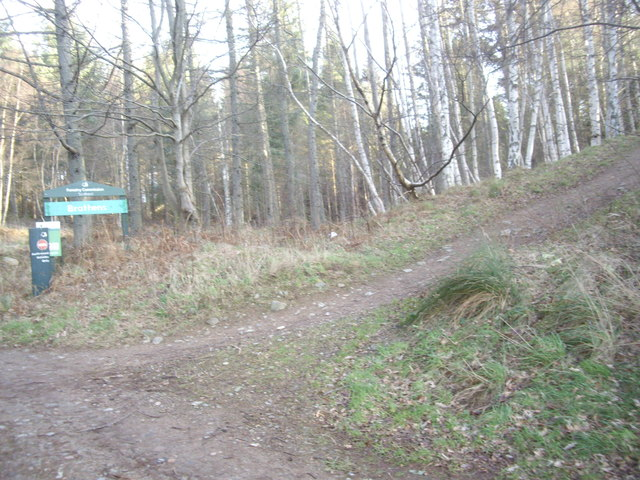 Path up to the old Deeside Railway track