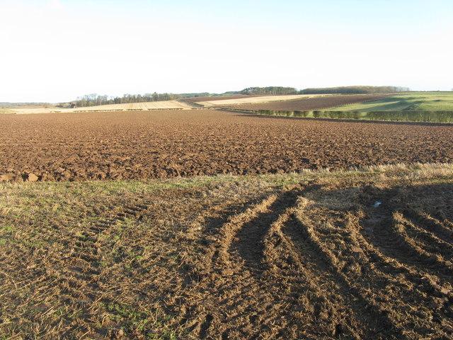 Winter farmscape - East Lothian