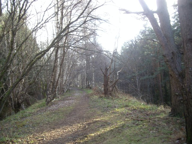 Path south along the old Deeside Railway embankment