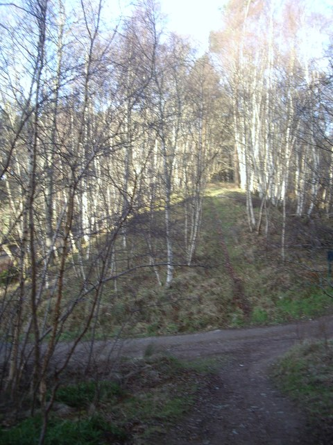 Path north up old Deeside Railway embankment