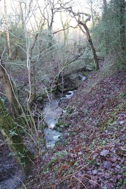 Unnamed stream in Stanleyhall Wood
