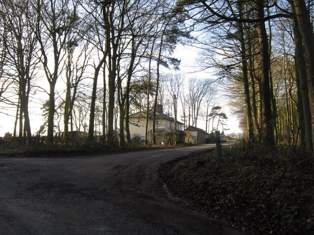 A track leading to Duggleby Wold Farm