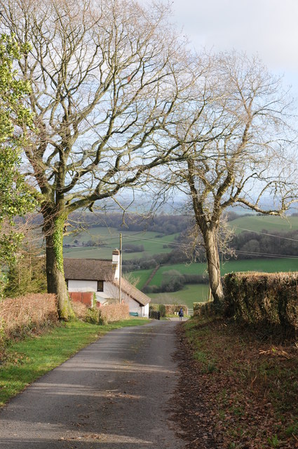 Road and cottage, Garway Hill