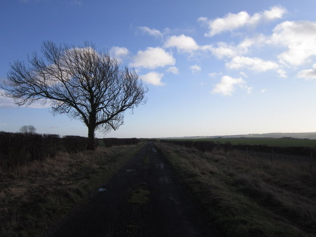 Simon Howe (road) towards Foxholes