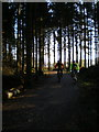 SJ2451 : Riding the Llandegla trails by Richard Law