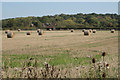 SP1764 : Round straw bales near Cherry Pool Farm by Robin Stott