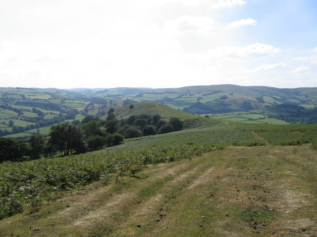 Offa's Dyke Path on Hergest Ridge