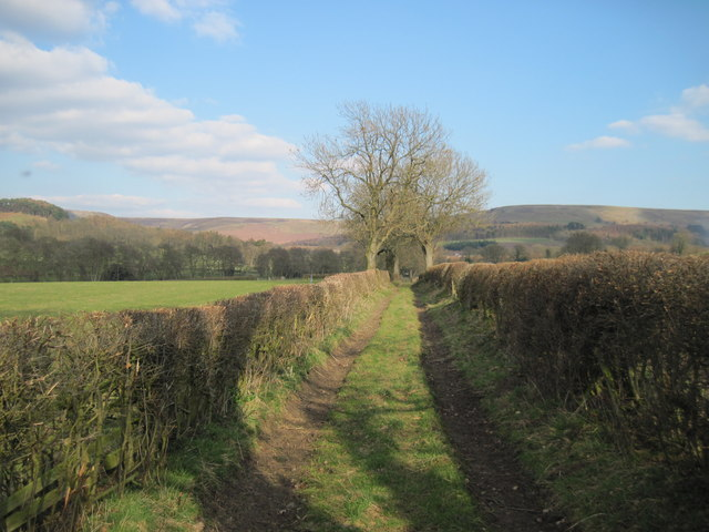 Track  to  Bridge  Beck  Lane