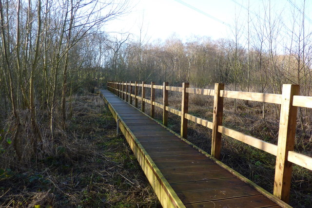 Footbridge, Goldbridge wood