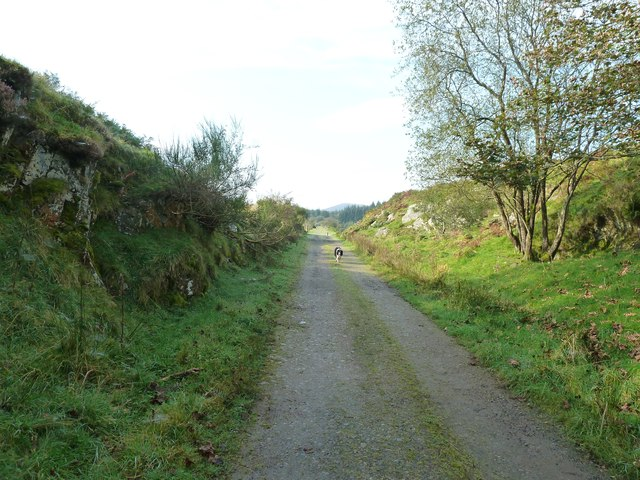Dismantled railway at Mossdale