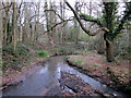 SP0280 : Manor Farm - The Start of Griffin's Brook by Roy Hughes