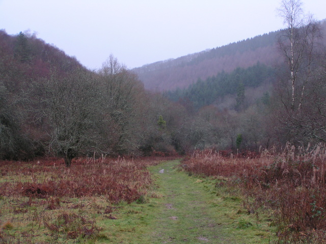 Footpath in the Teign valley