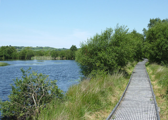 Boardwalk and pool on Cors Caron, Ceredigion
