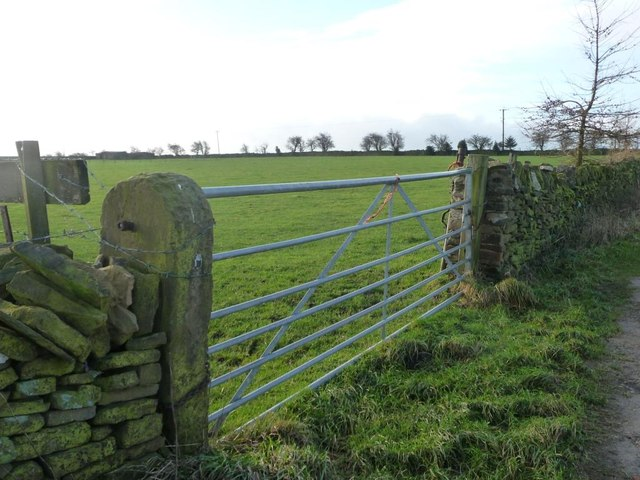 Field gate in dry stone wall